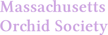 Massachusetts Orchid Society